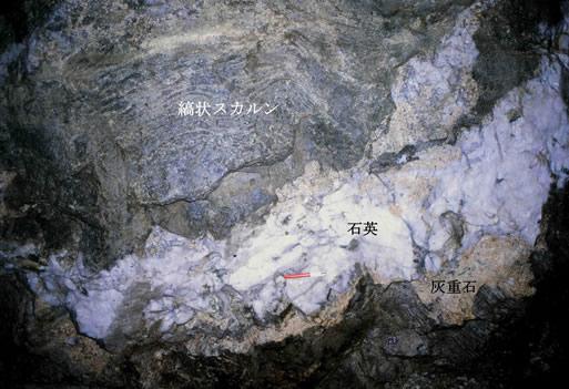 成因別鉱床(スカルン鉱床):山口...